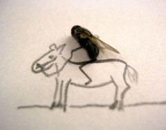 dead-flies-art-3.jpg